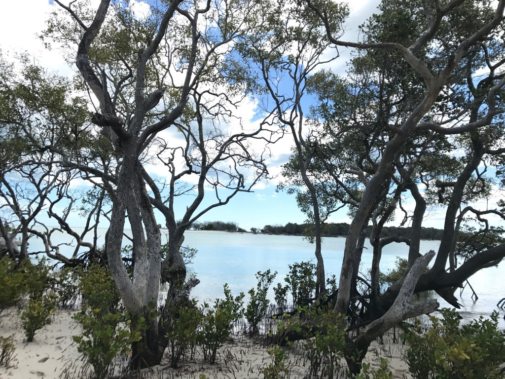 2017 Fraser Island Part 2 Wathumba3