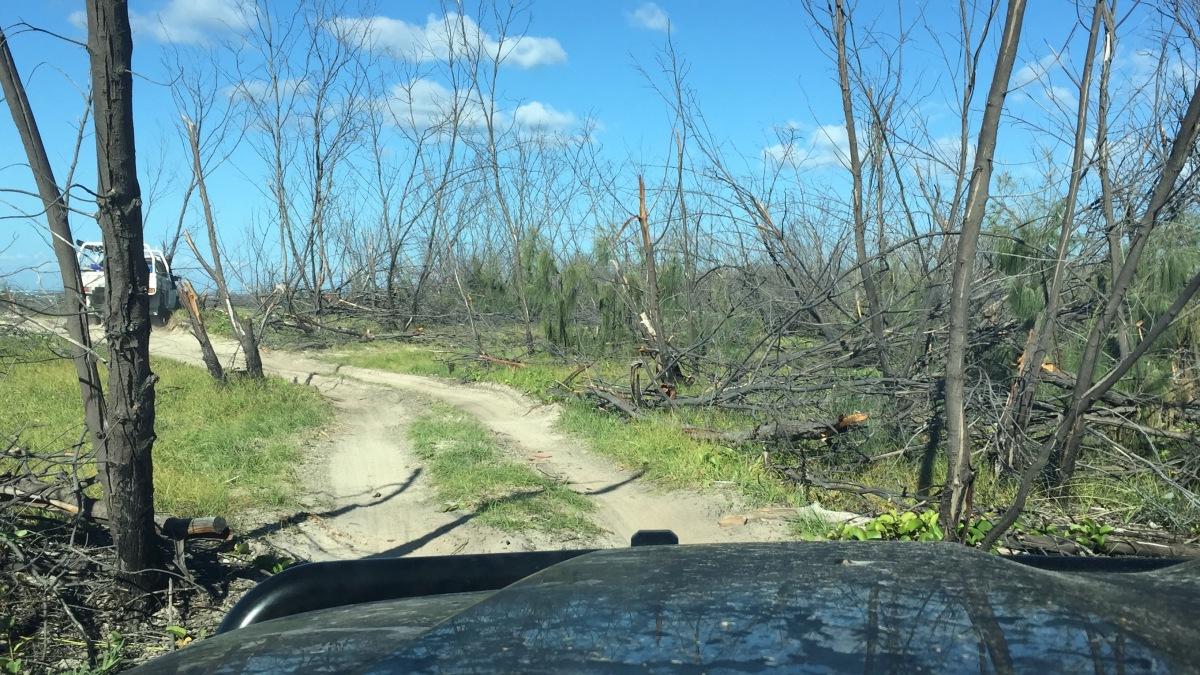 2017 Fraser Island Sandy Cape 3